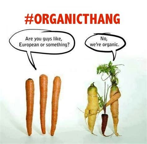 News articles on organic foods